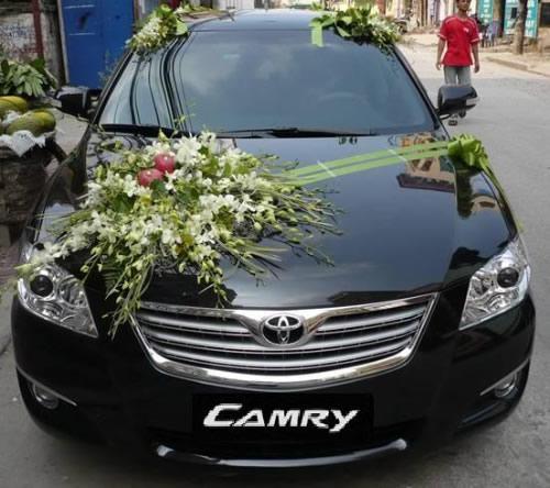 Cho thuê xe đám cưới tại TP Vinh Nghệ An